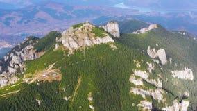 Vaggar och skogsommarlandskapet, flyg- sikt lager videofilmer