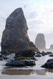 Vaggar, och stenar är Stillahavskusten som skummar vågor med reflexion Royaltyfria Foton