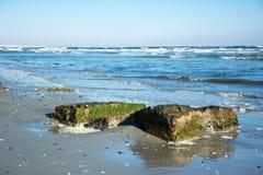 Vaggar på kusten Royaltyfri Fotografi