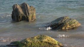 Vaggar på kusten lager videofilmer