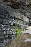 Vaggar på lågvatten Irland Arkivbild
