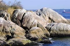 Vaggar på sjösidan arkivbild