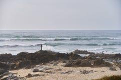 Vaggar p? stranden arkivbild