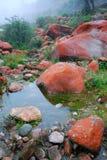 Vaggar röd Kina sichuan kangding yajiageng stranden arkivbild