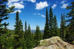 Vaggar, skogar och steniga berg, Colorado Fotografering för Bildbyråer