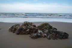 Vaggar stranden Royaltyfria Foton