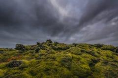 Vaggar täckande kullar för grön mossa av lava Royaltyfria Bilder