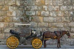 vagn Arkivfoto
