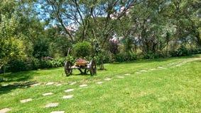Vagn i trädgård Arkivfoton