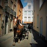 Vagn med en häst i Brugge Fotografering för Bildbyråer