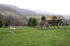 Vagn med hö Arkivfoton