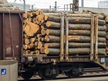 Vagn som laddas med trä Arkivbild