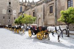 Vagnar av hästar som är stationära framme av den Seville domkyrkan arkivbilder