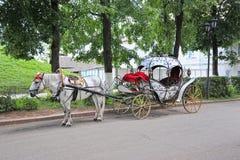 Vagnen och hästen Fotografering för Bildbyråer