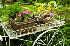 vagnsblommaträdgård Arkivbild