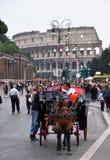 vagnscolosseumhäst italy rome Arkivbilder