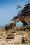 Vago masculino atractivo de la playa del vagabundo que toma en una roca Fotos de archivo