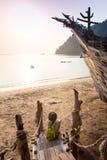 Vago masculino atractivo de la playa del vagabundo que toma en una roca Imagen de archivo libre de regalías