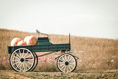 Vagone blu in pieno delle zucche in azienda agricola fotografia stock libera da diritti