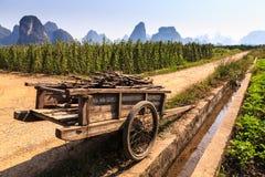 Vagone per il trasporto dei lingotti con le filiali in un paesaggio della valle del calcare Fotografie Stock Libere da Diritti