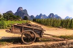 Vagone per il trasporto dei lingotti con le filiali in un paesaggio della valle del calcare Fotografia Stock