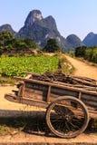 Vagone per il trasporto dei lingotti con le filiali in un paesaggio della valle del calcare Immagine Stock Libera da Diritti