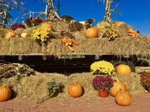 Vagone piacevole che visualizza il raccolto di autunno immagine stock