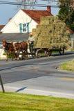 Vagone trainato da cavalli Immagini Stock Libere da Diritti