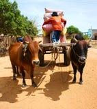 Vagone, trasporto alla campagna del Vietnam Immagini Stock Libere da Diritti