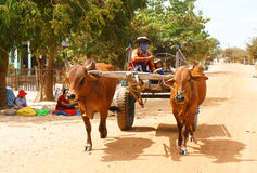 Vagone, trasporto alla campagna del Vietnam Immagine Stock Libera da Diritti