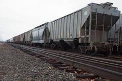 Vagonetti delle piste e del treno Fotografia Stock