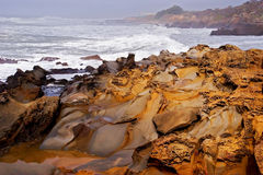 Vague déferlante d'océan Photographie stock
