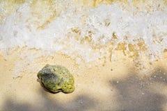 Vague de mer éclaboussant sur la plage sablonneuse de la Thaïlande, île de Samui Photos stock