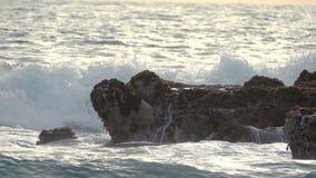 Vague et roches de ressac avec des algues Mouvement lent banque de vidéos