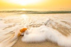 Vague molle d'océan bleu sur la plage sablonneuse Photos libres de droits