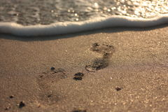Vague molle d'océan bleu sur la plage sablonneuse Fond photographie stock libre de droits