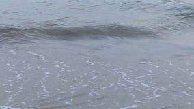 Vague molle de la mer sur la plage sablonneuse, belle plage banque de vidéos