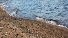 Vague molle sur la plage sablonneuse Fond image stock