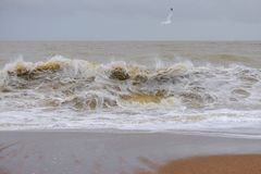 Vague sur la plage photos stock