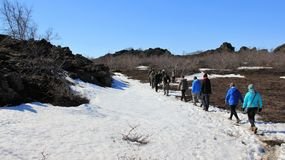 Vagueamento na paisagem do inverno fotografia de stock royalty free