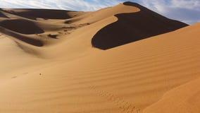 Vagueamento no deserto Fotografia de Stock