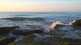 Vagues éclaboussant sur les roches envahies aux algues vertes banque de vidéos