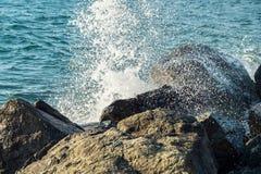 Vagues au bord de la mer image libre de droits