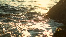 Vagues d'or douces sur un bord de la mer rocheux, plage de Bondi clips vidéos