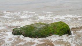 Vagues d'eau d'océan éclaboussant contre une roche verte moussue Image stock