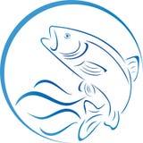 Vagues de poissons, de truite et d'eau, poissons et logo de pêche Images libres de droits