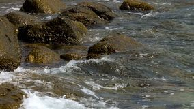 Vagues de rivage d'oc?an clips vidéos