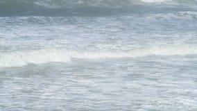 Vagues de roulement au littoral clips vidéos