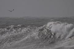 Vagues de rupture orageuses photos stock