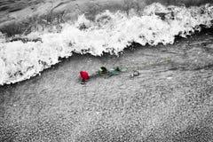Vagues enlevant une rose rouge de la plage Couleur contre noir et blanc Amour photos libres de droits